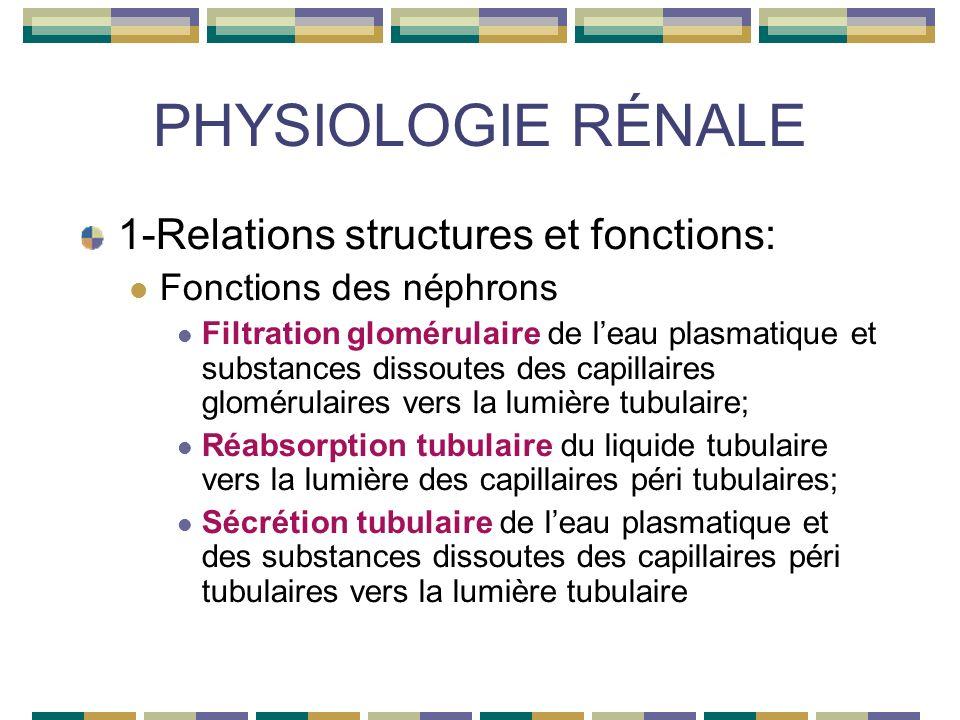 PHYSIOLOGIE RÉNALE 4- Transferts tubulaires Réabsorption tubulaire Tube collecteur: Eau avec ADH Sodium avec aldostérone Potassium Chlore Bicarbonate urée