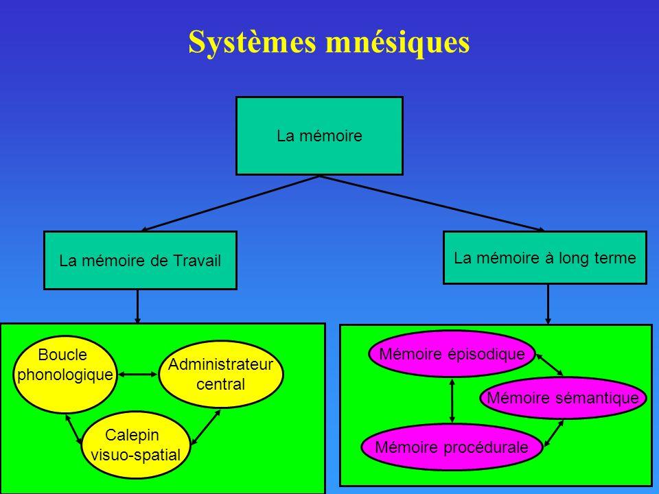 Méthodes détude de la mémoire à long terme Méthode dobservation Méthode du journal Méthode expérimentale