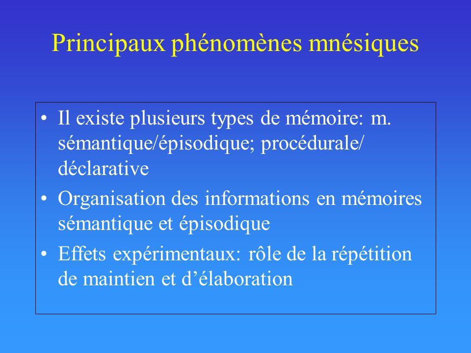Principaux phénomènes mnésiques Il existe plusieurs types de mémoire: m. sémantique/épisodique; procédurale/ déclarative Organisation des informations
