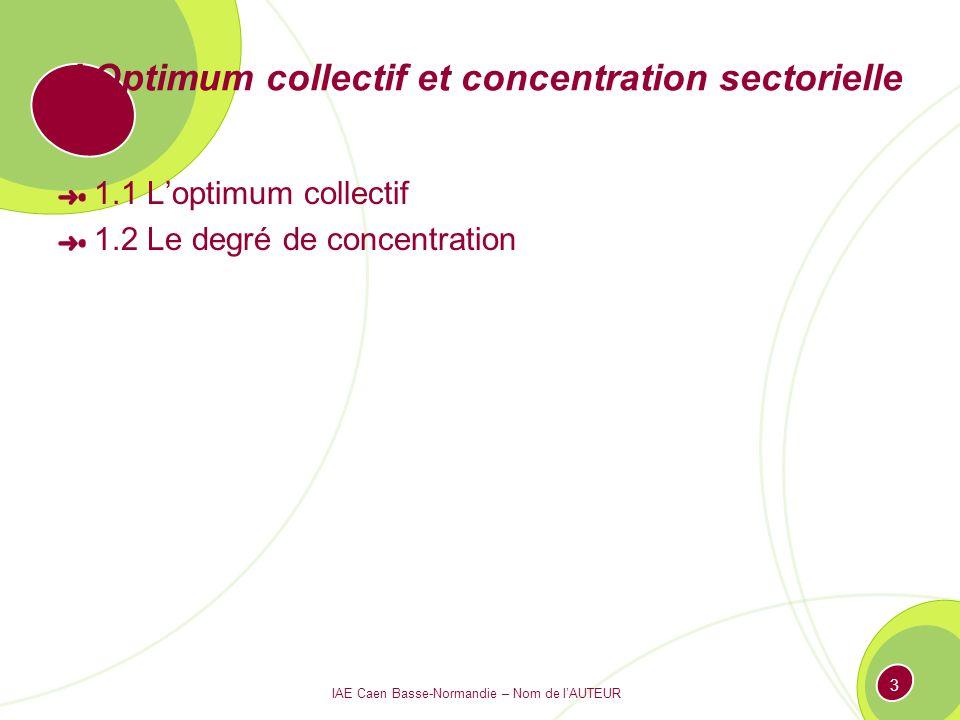 3 I Optimum collectif et concentration sectorielle 1.1 Loptimum collectif 1.2 Le degré de concentration