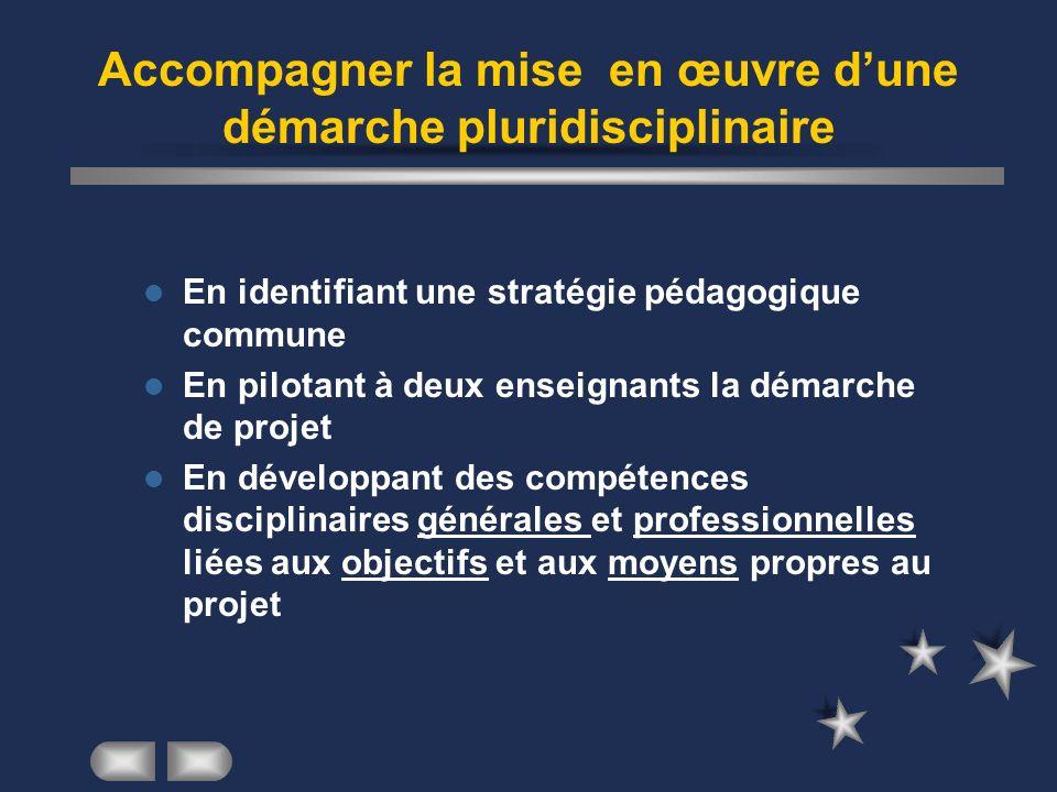 Accompagner la mise en œuvre dune démarche pluridisciplinaire En identifiant une stratégie pédagogique commune En pilotant à deux enseignants la démar