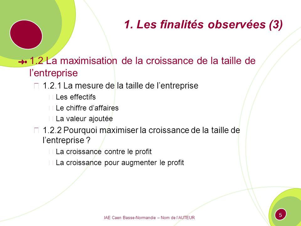 IAE Caen Basse-Normandie – Nom de lAUTEUR 5 1. Les finalités observées (3) 1.2 La maximisation de la croissance de la taille de lentreprise 1.2.1 La m