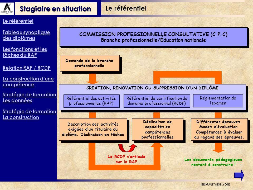Stagiaire en situation GRIMAULT (IEN LYON) Description des activités exigées dun titulaire du diplôme.