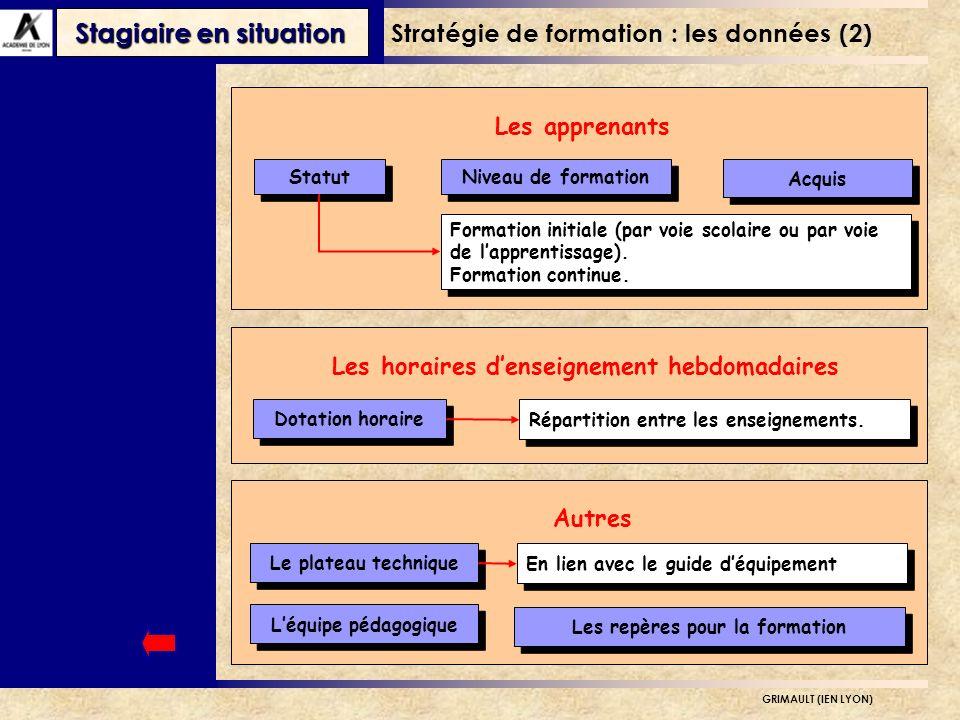 Stagiaire en situation GRIMAULT (IEN LYON) Stratégie de formation : les données (2) Statut Niveau de formation Formation initiale (par voie scolaire ou par voie de lapprentissage).