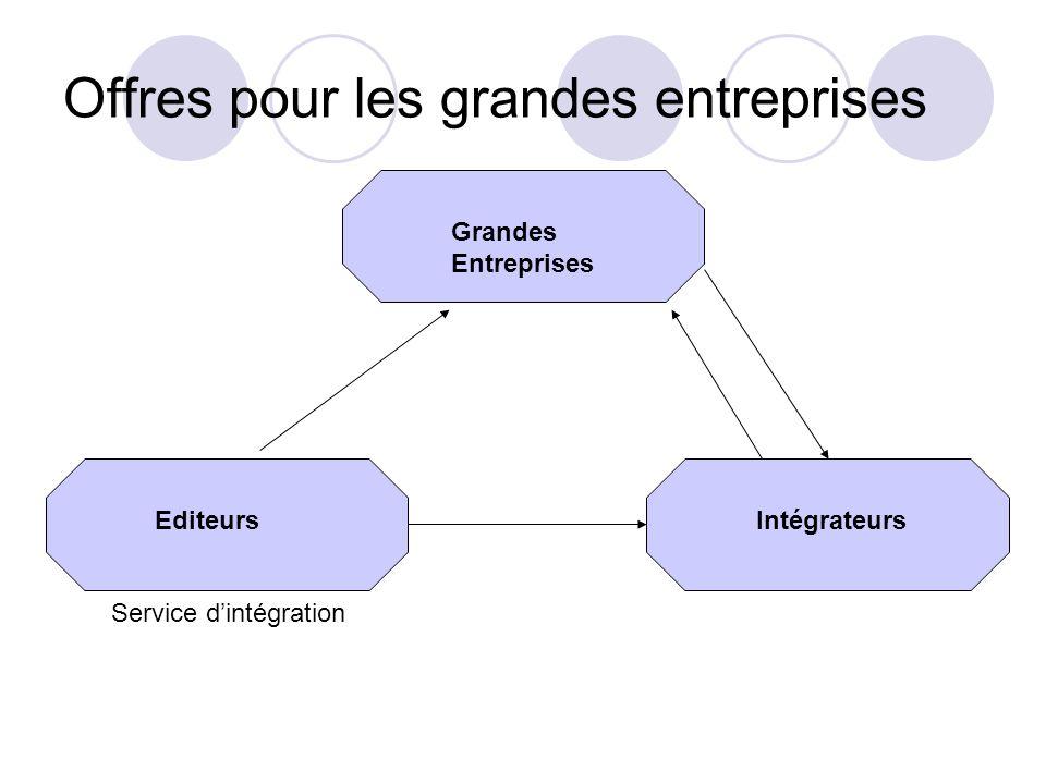 Offres pour les grandes entreprises Grandes Entreprises IntégrateursEditeurs Service dintégration