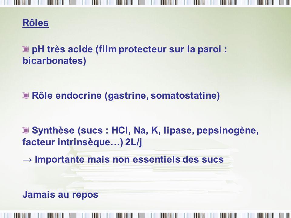 Rôles pH très acide (film protecteur sur la paroi : bicarbonates) Rôle endocrine (gastrine, somatostatine) Synthèse (sucs : HCl, Na, K, lipase, pepsin