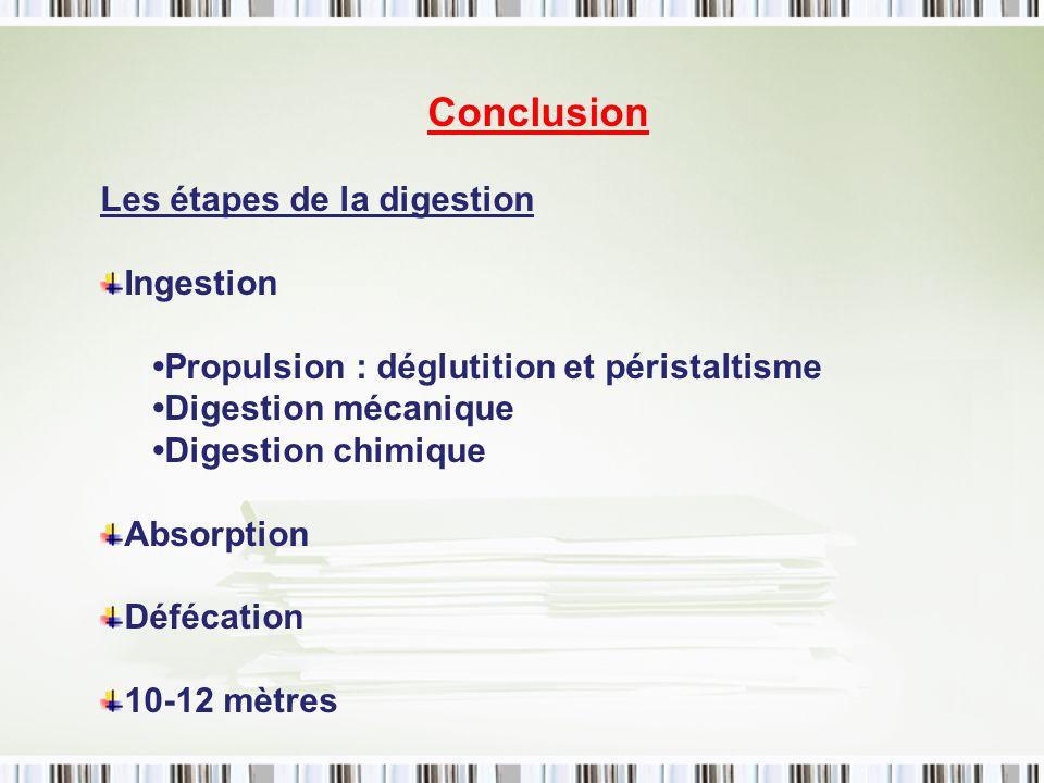 Conclusion Les étapes de la digestion Ingestion Propulsion : déglutition et péristaltisme Digestion mécanique Digestion chimique Absorption Défécation