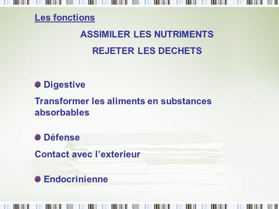 Pathologies pancréatiques Pancréatite Mucoviscidose