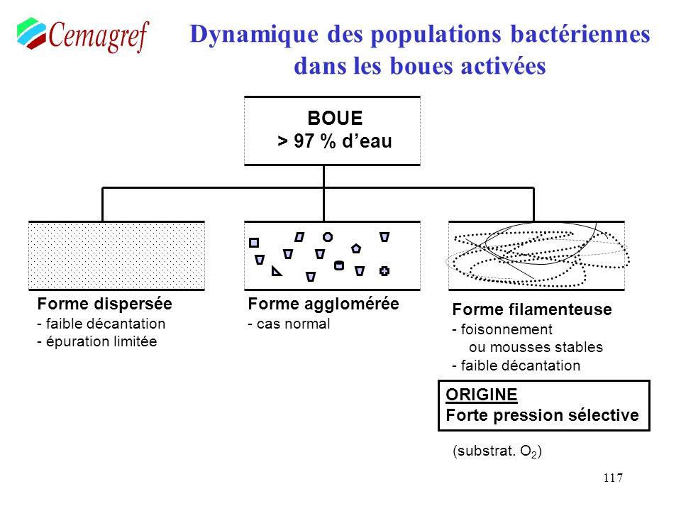 117 Dynamique des populations bactériennes dans les boues activées BOUE > 97 % deau Forme dispersée - faible décantation - épuration limitée Forme agg
