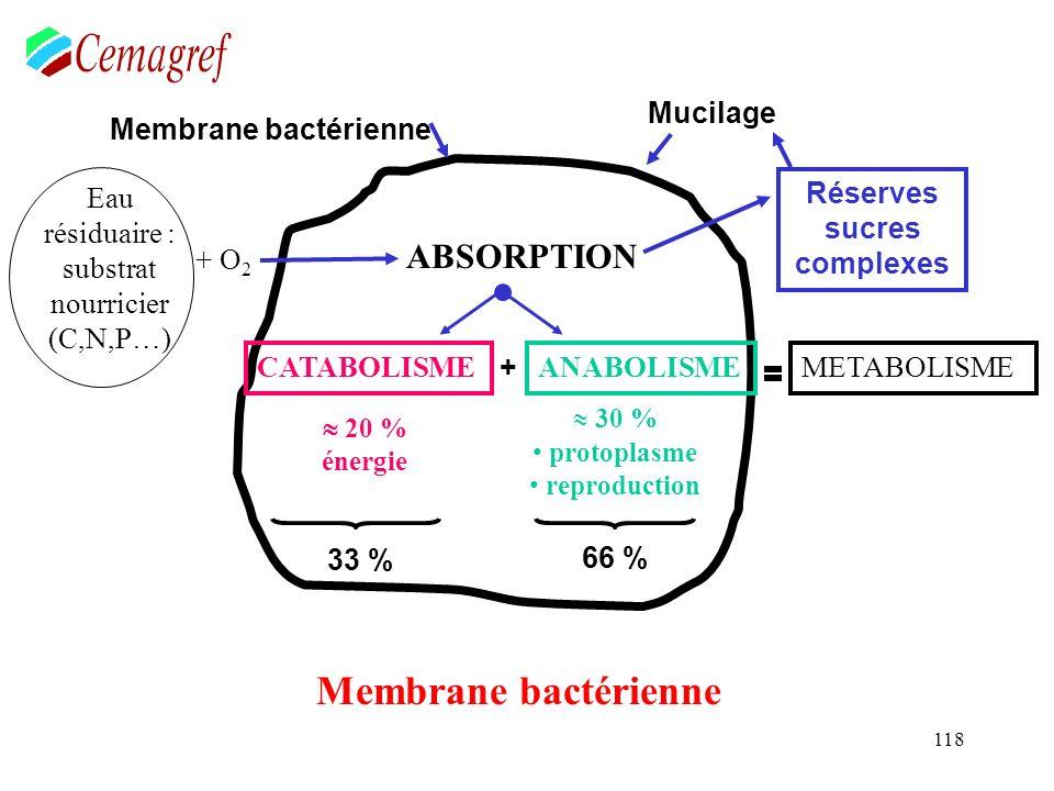 118 Membrane bactérienne Eau résiduaire : substrat nourricier (C,N,P…) ABSORPTION CATABOLISMEANABOLISME 20 % énergie 30 % protoplasme reproduction MET