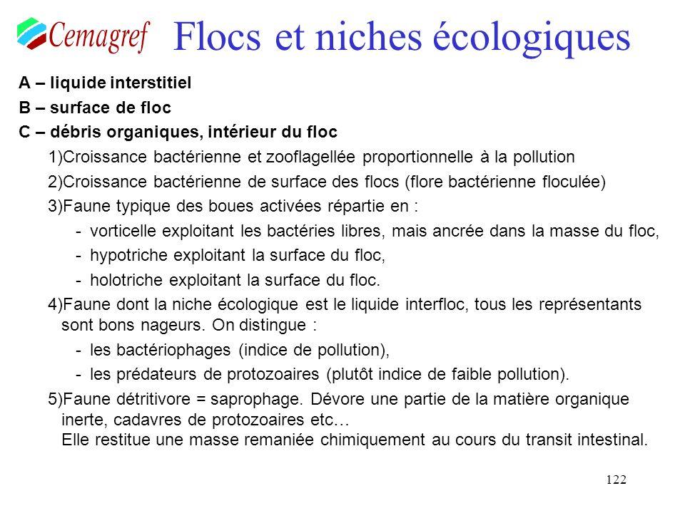 122 Flocs et niches écologiques A – liquide interstitiel B – surface de floc C – débris organiques, intérieur du floc 1)Croissance bactérienne et zoof