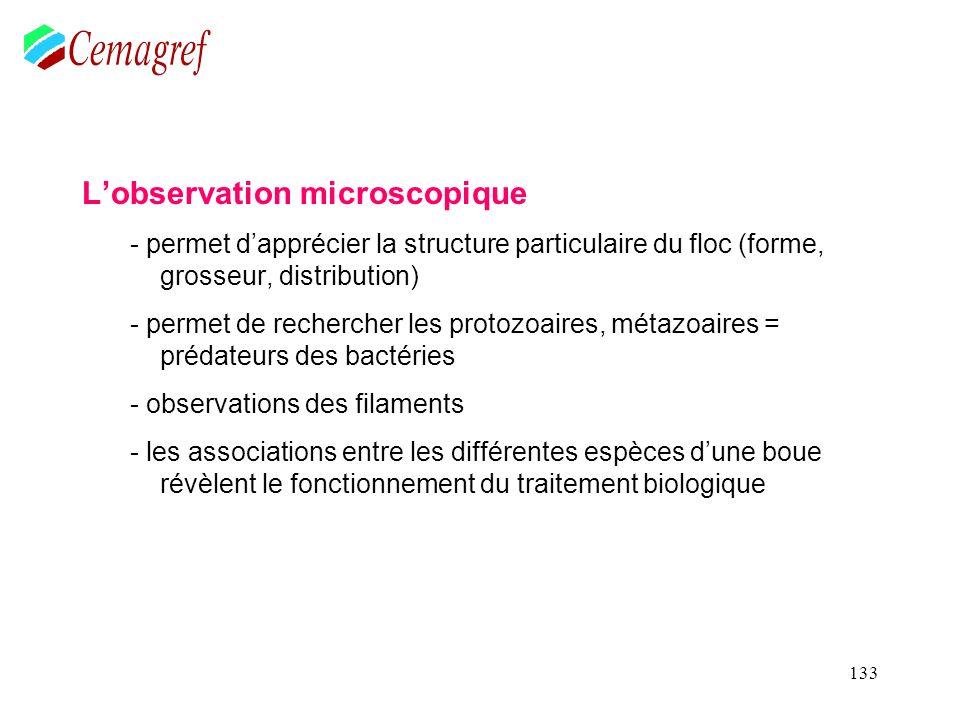 133 Lobservation microscopique - permet dapprécier la structure particulaire du floc (forme, grosseur, distribution) - permet de rechercher les protoz
