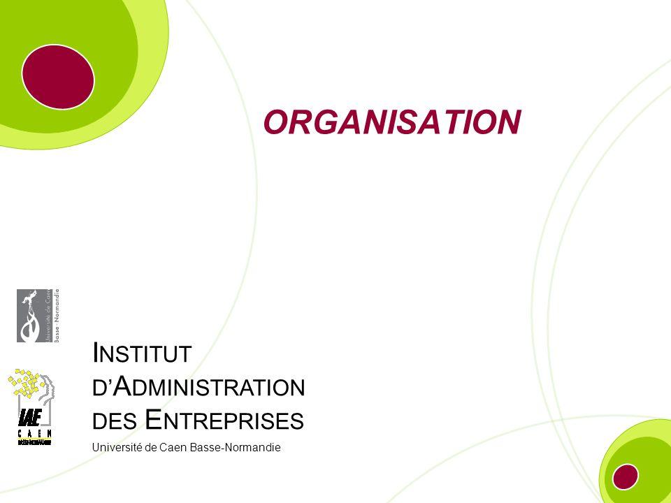 IAE Caen Basse-Normandie – Nom de lAUTEUR 21 Organisation et stratégie des entreprises 1.