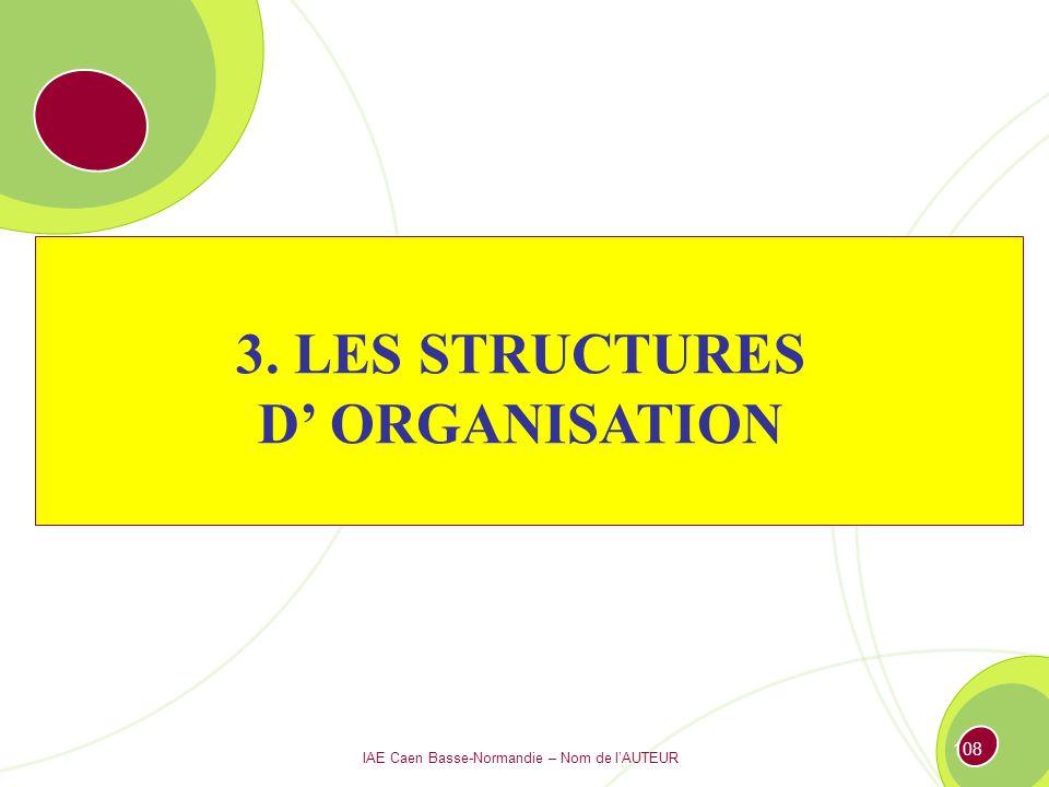 IAE Caen Basse-Normandie – Nom de lAUTEUR 107 Conclusion Théories des organisations : quelques mots à retenir…..