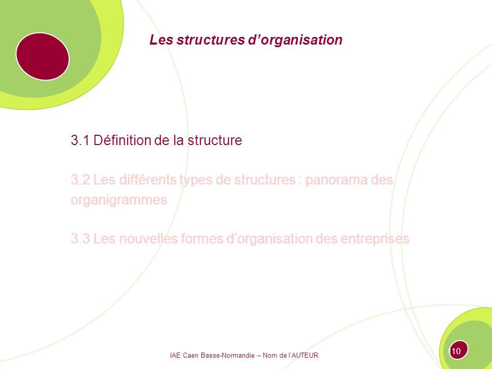 IAE Caen Basse-Normandie – Nom de lAUTEUR 109 Les structures dorganisation 3.1 Définition de la structure 3.2 Les différents types de structures : panorama des organigrammes 3.3 Les nouvelles formes dorganisation des entreprises