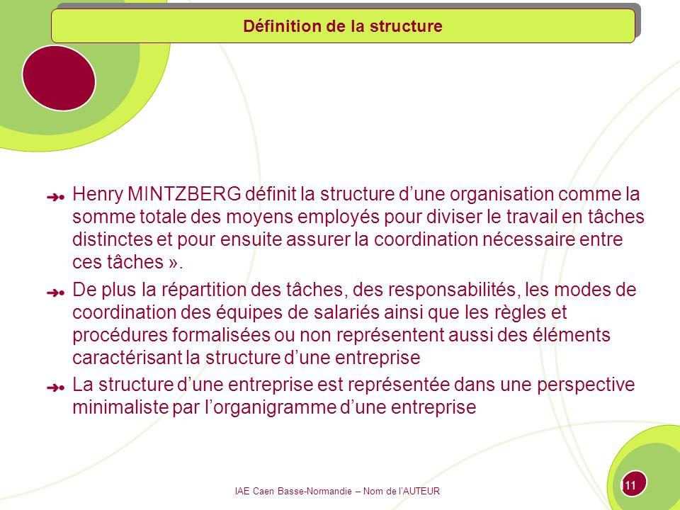 IAE Caen Basse-Normandie – Nom de lAUTEUR 110 Les structures dorganisation 3.1 Définition de la structure 3.2 Les différents types de structures : panorama des organigrammes 3.3 Les nouvelles formes dorganisation des entreprises