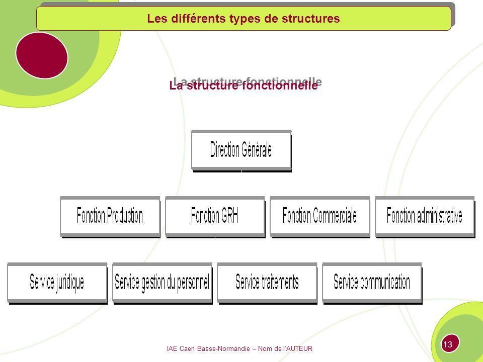 IAE Caen Basse-Normandie – Nom de lAUTEUR 112 Les structures dorganisation 3.1 Définition de la structure 3.2 Les différents types de structures : panorama des organigrammes 3.3 Les nouvelles formes dorganisation des entreprises