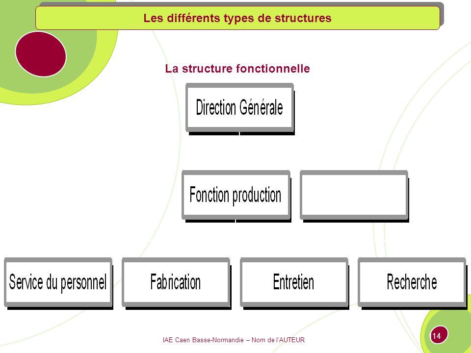 IAE Caen Basse-Normandie – Nom de lAUTEUR 113 La structure fonctionnelle Les différents types de structures