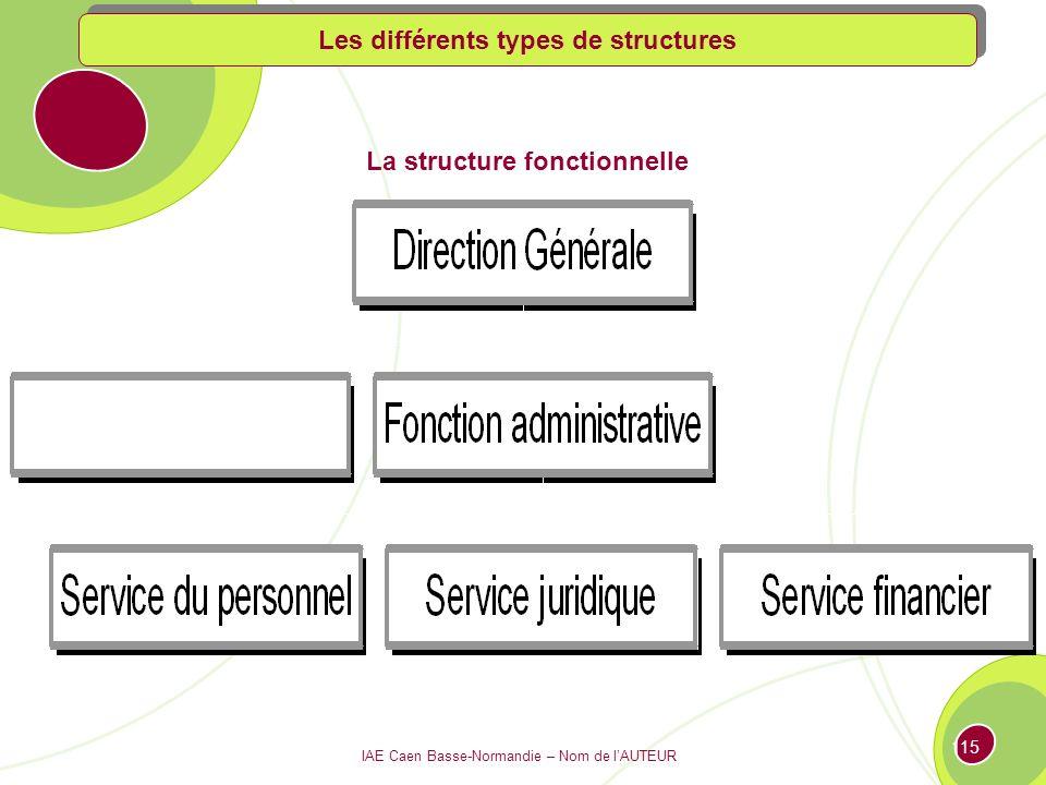 IAE Caen Basse-Normandie – Nom de lAUTEUR 114 La structure fonctionnelle Les différents types de structures