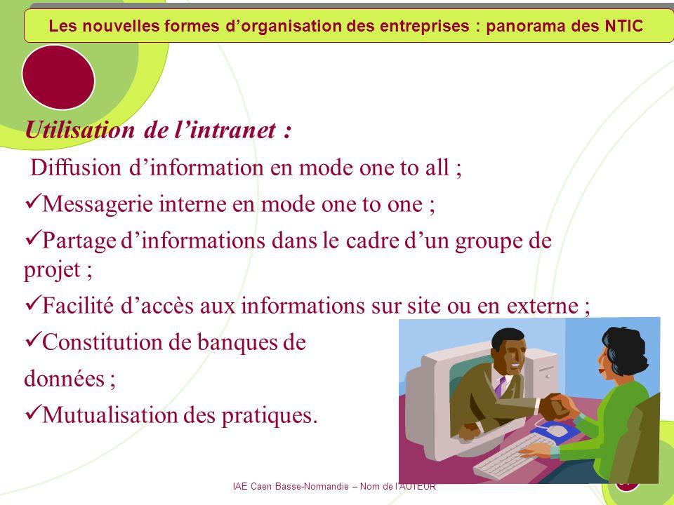 IAE Caen Basse-Normandie – Nom de lAUTEUR 130 Fonctionnement dintranet Global intranet Nomades Sites principaux Siège Télétravailleurs Bureaux - agences Internet Les nouvelles formes dorganisation des entreprises : panorama des NTIC
