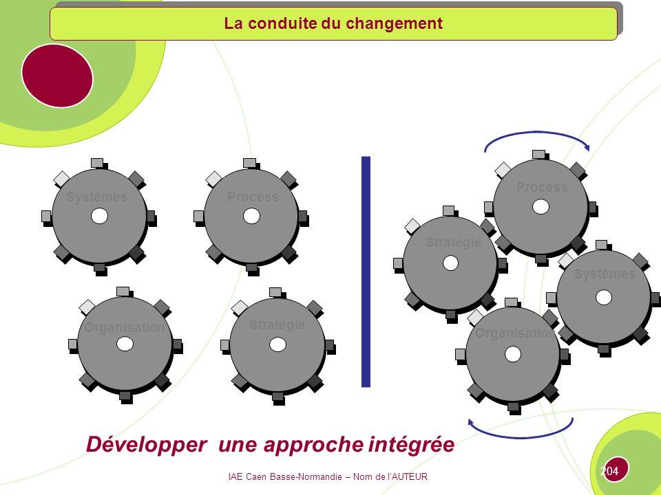 IAE Caen Basse-Normandie – Nom de lAUTEUR 203 La route du changement…nest pas une ligne droite source KPMG ACCIDENT.