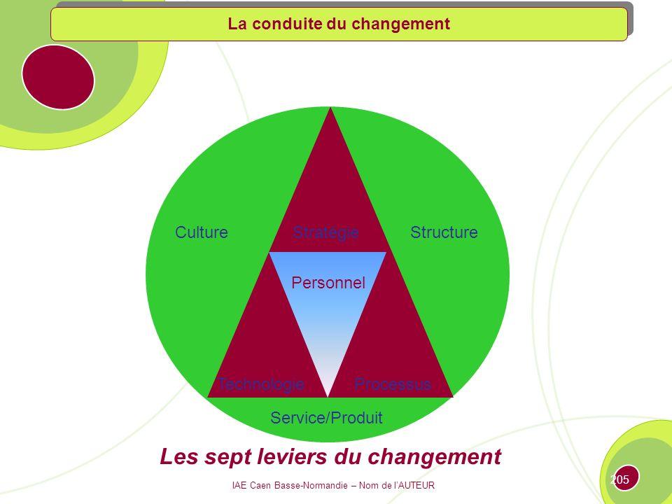 IAE Caen Basse-Normandie – Nom de lAUTEUR 204 Développer une approche intégrée Systèmes Organisation Stratégie Process Stratégie Process Organisation Systèmes La conduite du changement