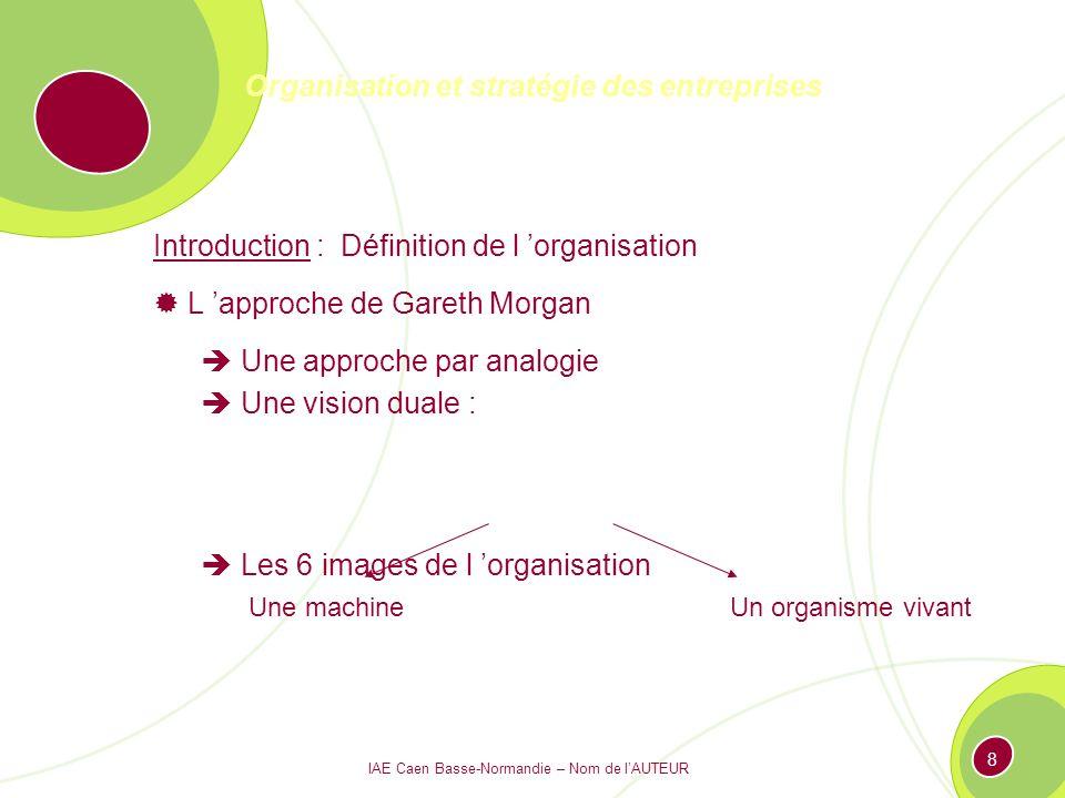 IAE Caen Basse-Normandie – Nom de lAUTEUR 198 Valeurs Finales Valeurs instrumentales (comment ?) Ex : flexibilité, qualité… Vision Ex : leader dans lindustrie X… le plus innovant du secteur Y Mission : Pourquoi .