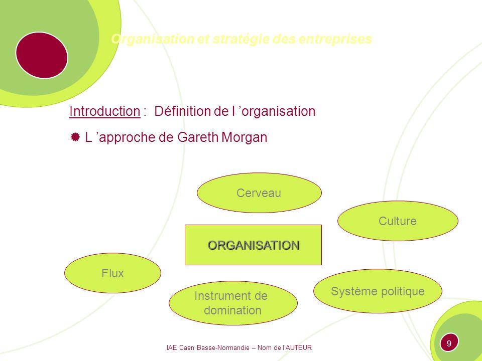 IAE Caen Basse-Normandie – Nom de lAUTEUR 199 Le management des organisations 4.1.