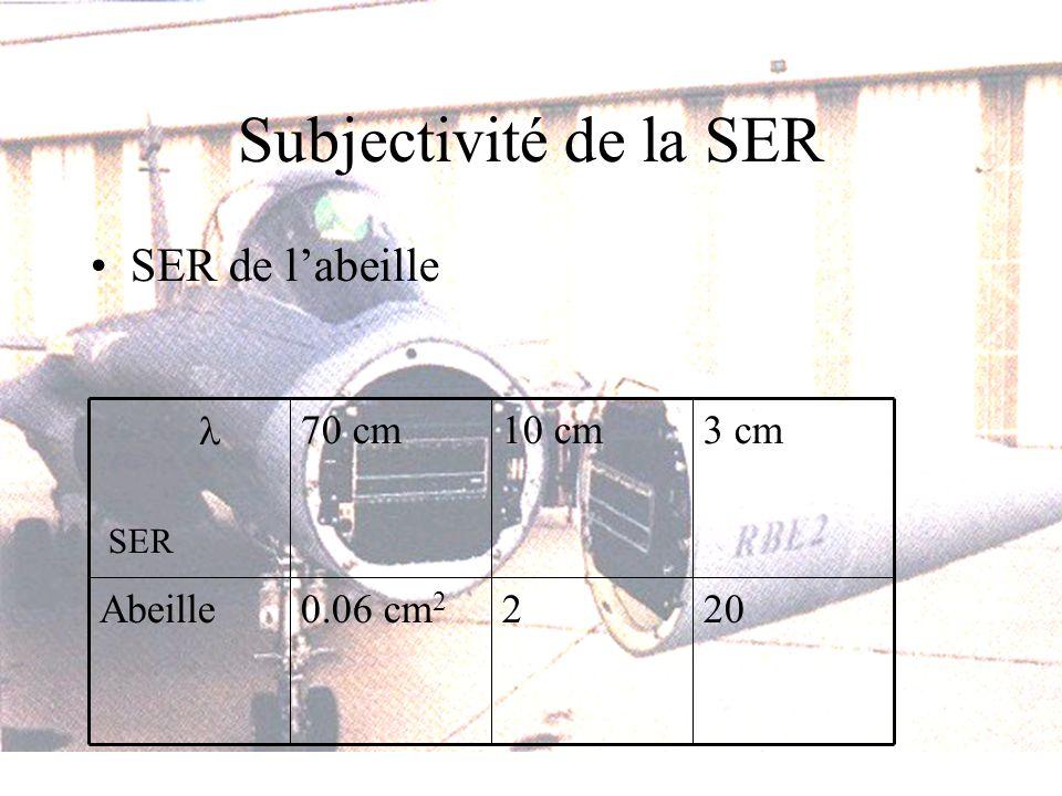 Subjectivité de la SER SER de labeille 2020.06 cm 2 Abeille 3 cm10 cm70 cm SER