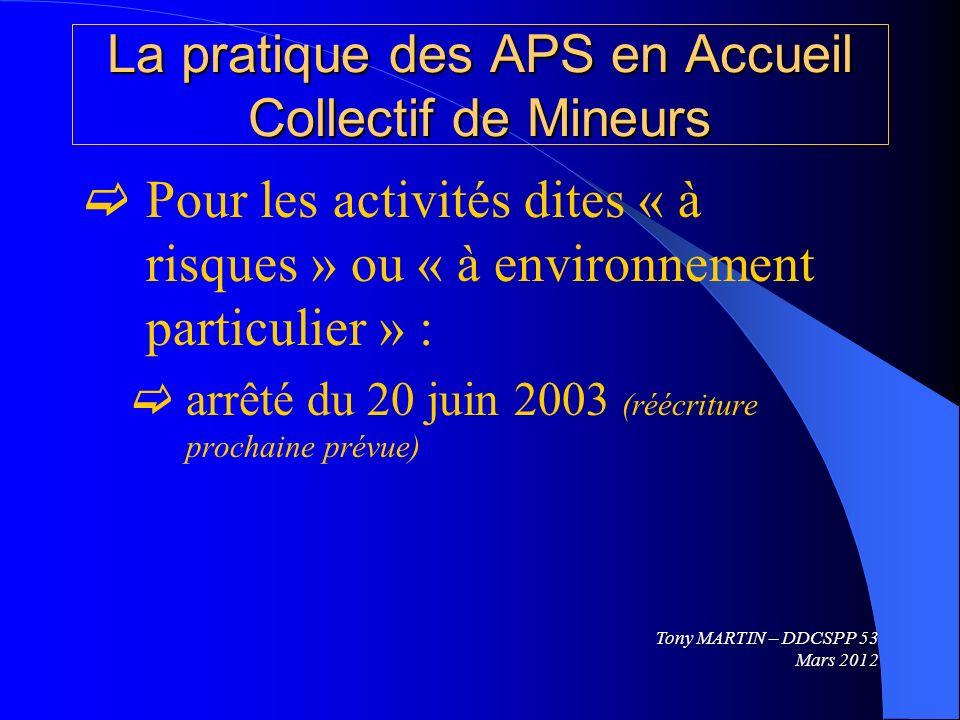 La pratique des APS en Accueil Collectif de Mineurs Pour les activités dites « à risques » ou « à environnement particulier » : arrêté du 20 juin 2003