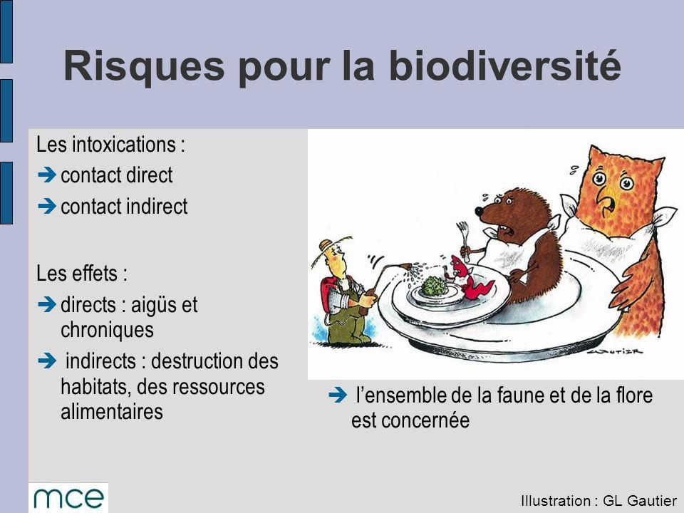 Risques pour la biodiversité Les intoxications : contact direct contact indirect Les effets : directs : aigüs et chroniques indirects : destruction de