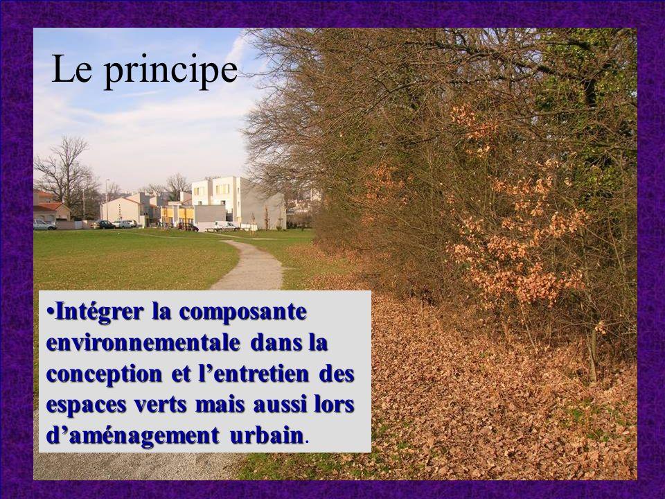 Intégrer la composante environnementale dans la conception et lentretien des espaces verts mais aussi lors daménagement urbainIntégrer la composante environnementale dans la conception et lentretien des espaces verts mais aussi lors daménagement urbain.