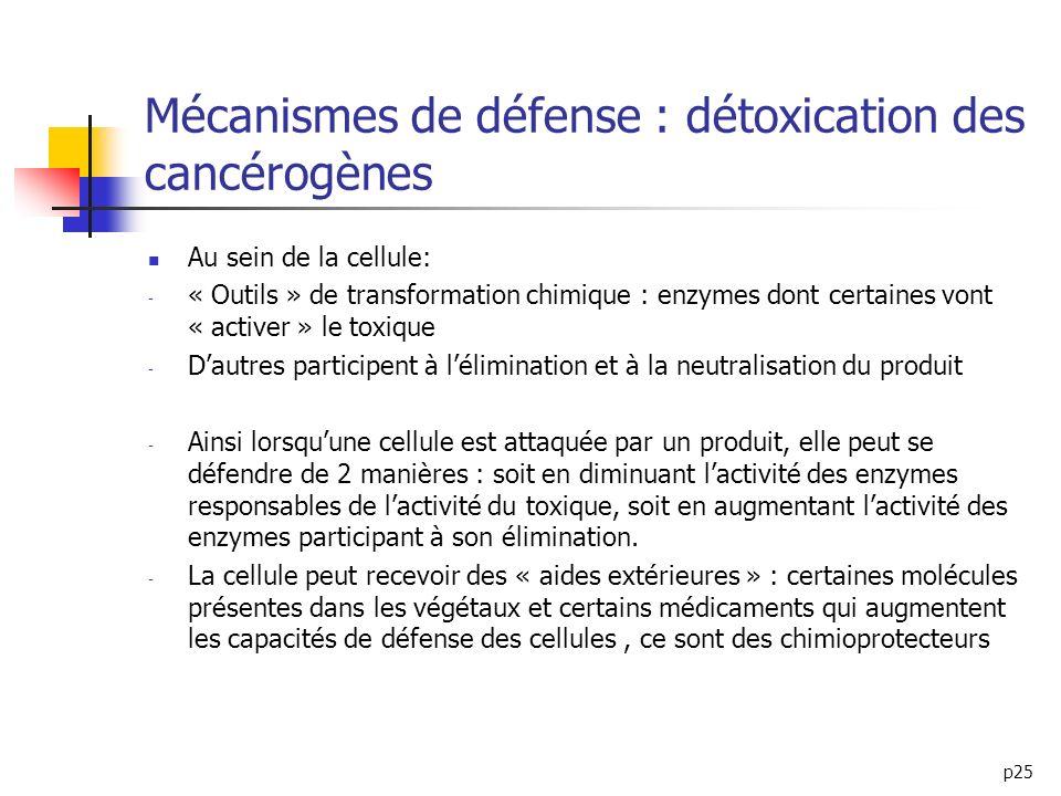 p25 Mécanismes de défense : détoxication des cancérogènes Au sein de la cellule: - « Outils » de transformation chimique : enzymes dont certaines vont