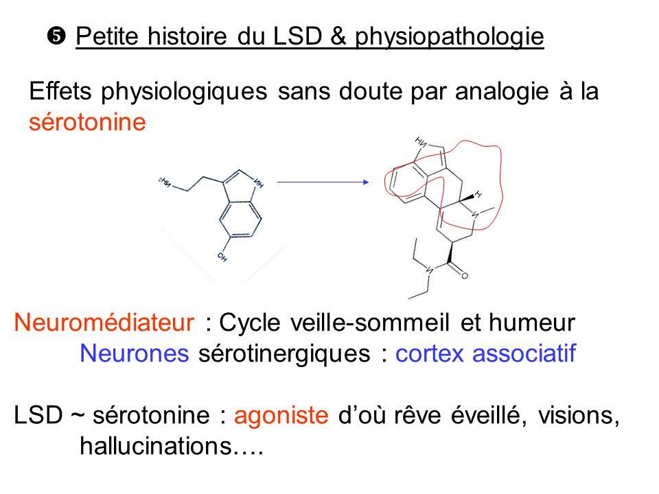 Effets physiologiques sans doute par analogie à la sérotonine Petite histoire du LSD & physiopathologie Neuromédiateur : Cycle veille-sommeil et humeu