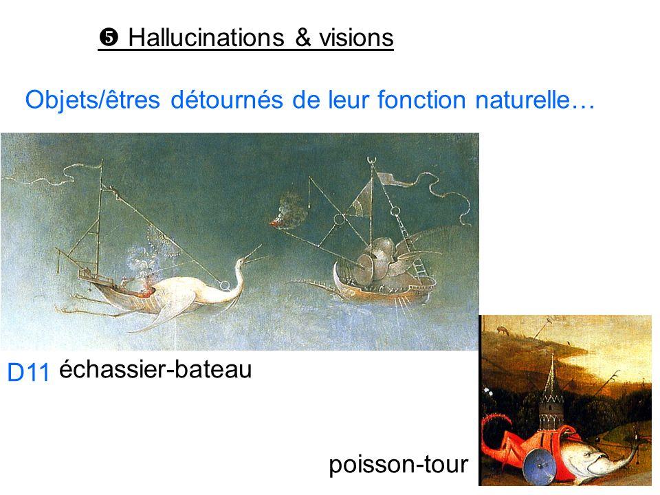 Hallucinations & visions poisson-tour Objets/êtres détournés de leur fonction naturelle… échassier-bateau D11 D12