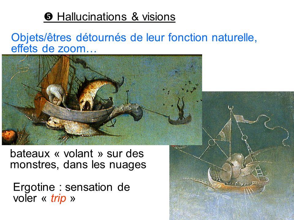 Hallucinations & visions Ergotine : sensation de voler « trip » Objets/êtres détournés de leur fonction naturelle, effets de zoom… bateaux « volant »