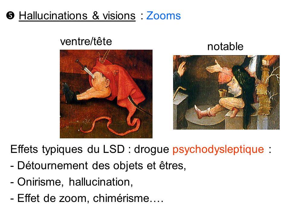 Effets typiques du LSD : drogue psychodysleptique : - Détournement des objets et êtres, - Onirisme, hallucination, - Effet de zoom, chimérisme…. Hallu