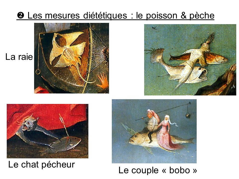 Les mesures diététiques : le poisson & pèche La raie Le couple « bobo » Le chat pécheur