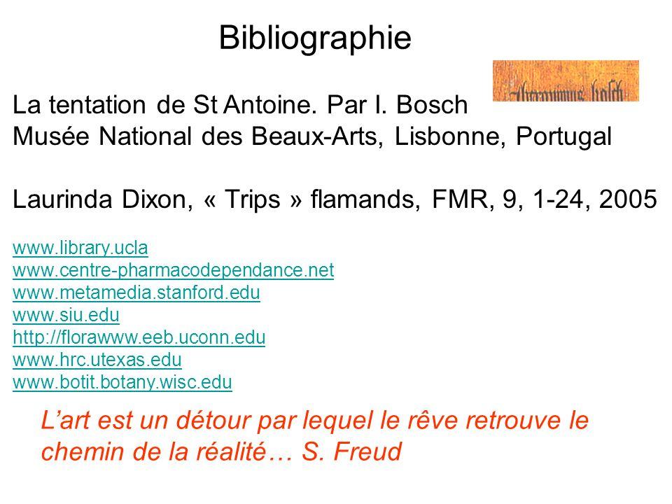 Bibliographie La tentation de St Antoine. Par I. Bosch Musée National des Beaux-Arts, Lisbonne, Portugal Laurinda Dixon, « Trips » flamands, FMR, 9, 1