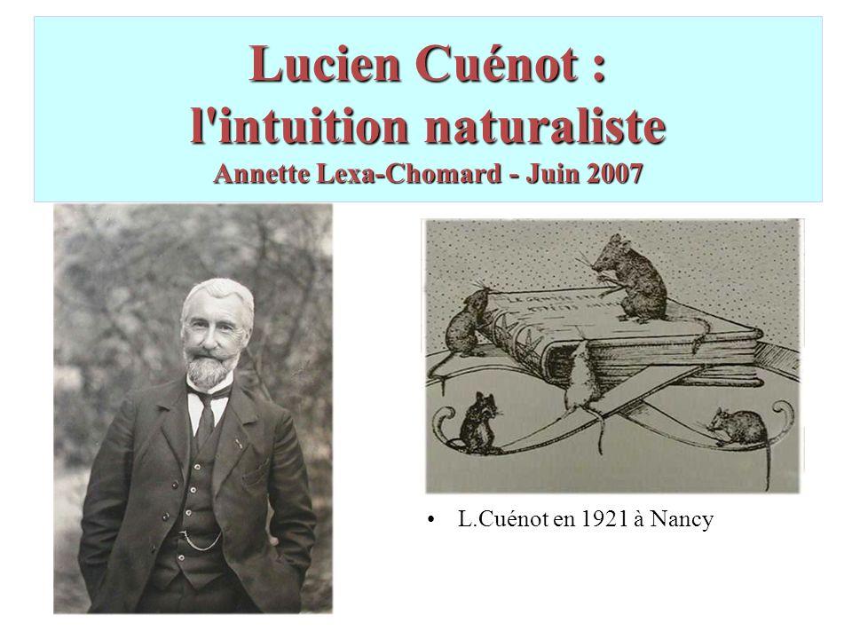 PLAN GENERAL Biographie et oeuvre de L.C.Biographie et oeuvre de L.C.