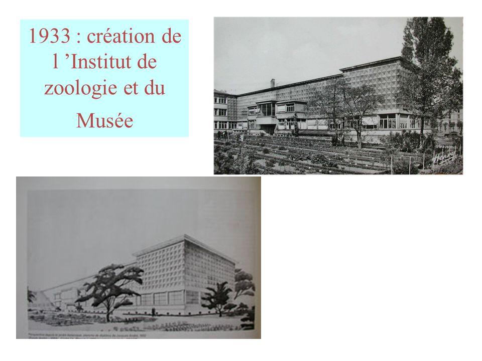 1933 : création de l Institut de zoologie et du Musée