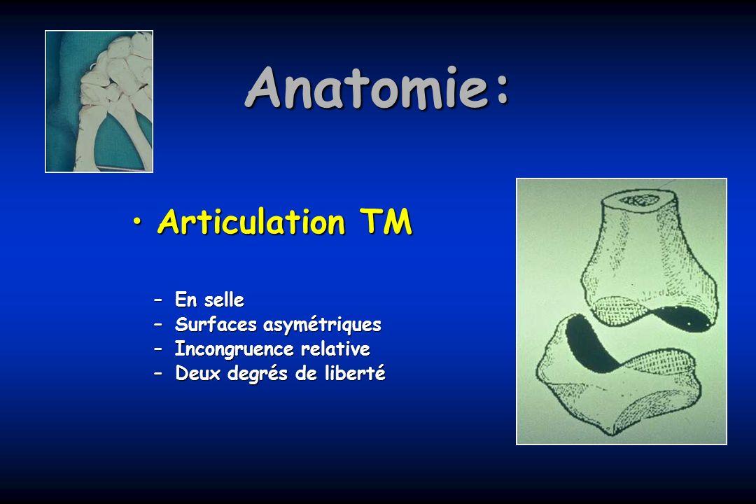 Anatomie: Articulation TMArticulation TM –En selle –Surfaces asymétriques –Incongruence relative –Deux degrés de liberté