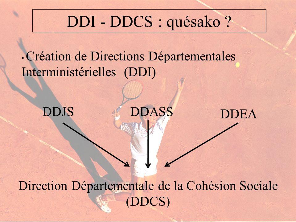 Création de Directions Départementales Interministérielles (DDI) DDI - DDCS : quésako ? DDJSDDASS DDEA Direction Départementale de la Cohésion Sociale