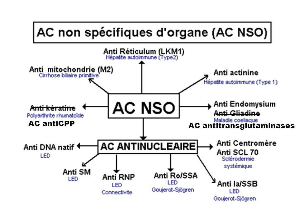 AC antiCPP AC antitransglutaminases