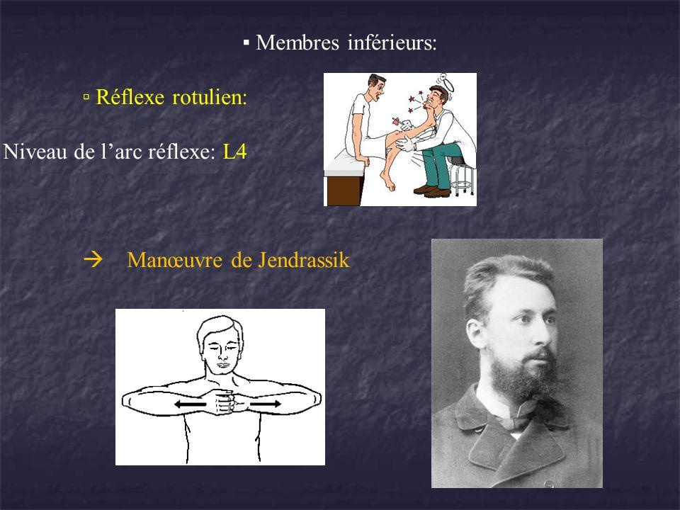 Membres inférieurs: Réflexe rotulien: Niveau de larc réflexe: L4 Manœuvre de Jendrassik