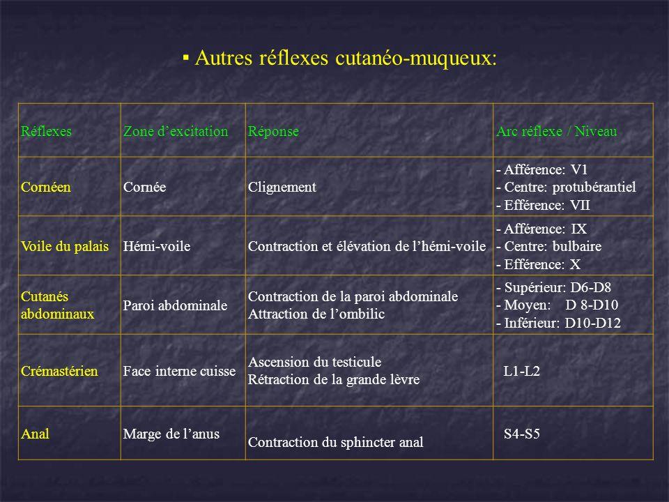 RéflexesZone dexcitationRéponseArc réflexe / Niveau CornéenCornéeClignement - Afférence: V1 - Centre: protubérantiel - Efférence: VII Voile du palaisH