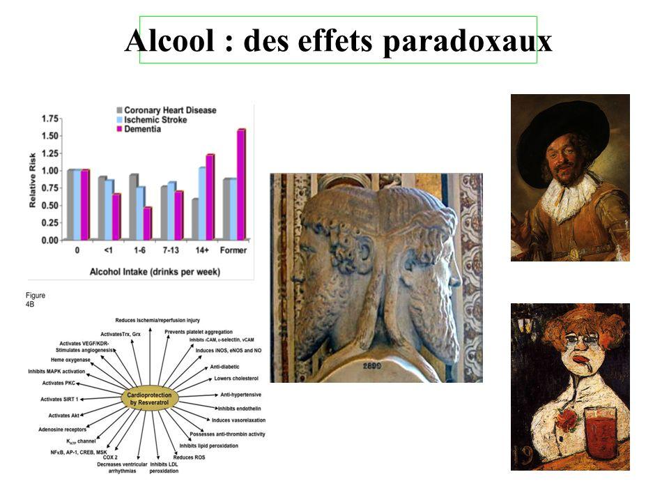 Alcool : des effets paradoxaux