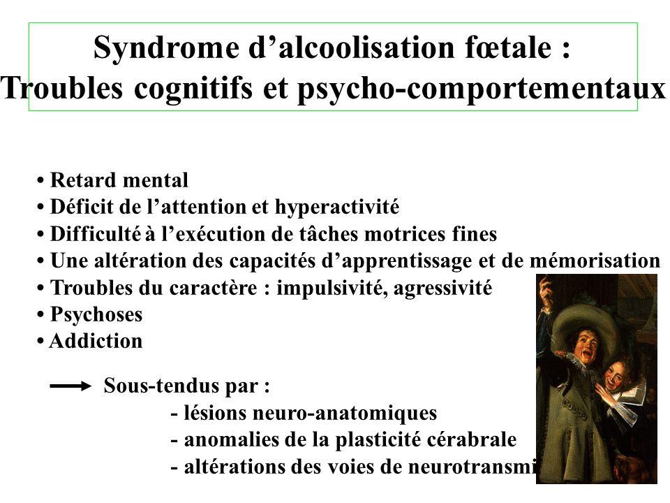 Syndrome dalcoolisation fœtale : Troubles cognitifs et psycho-comportementaux Retard mental Déficit de lattention et hyperactivité Difficulté à lexécu