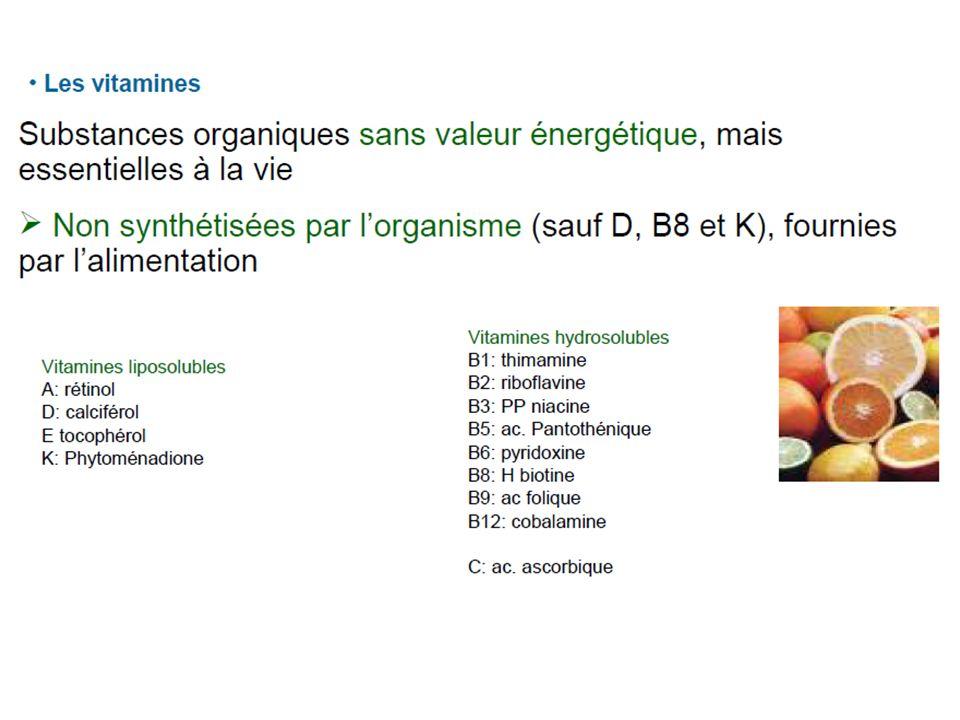 Supplément vitaminique (Encyclopédie Larousse) Apport de vitamines, généralement sous forme médicamenteuse, prescrit en cas d alimentation insuffisante pour satisfaire les besoins nutritionnels.