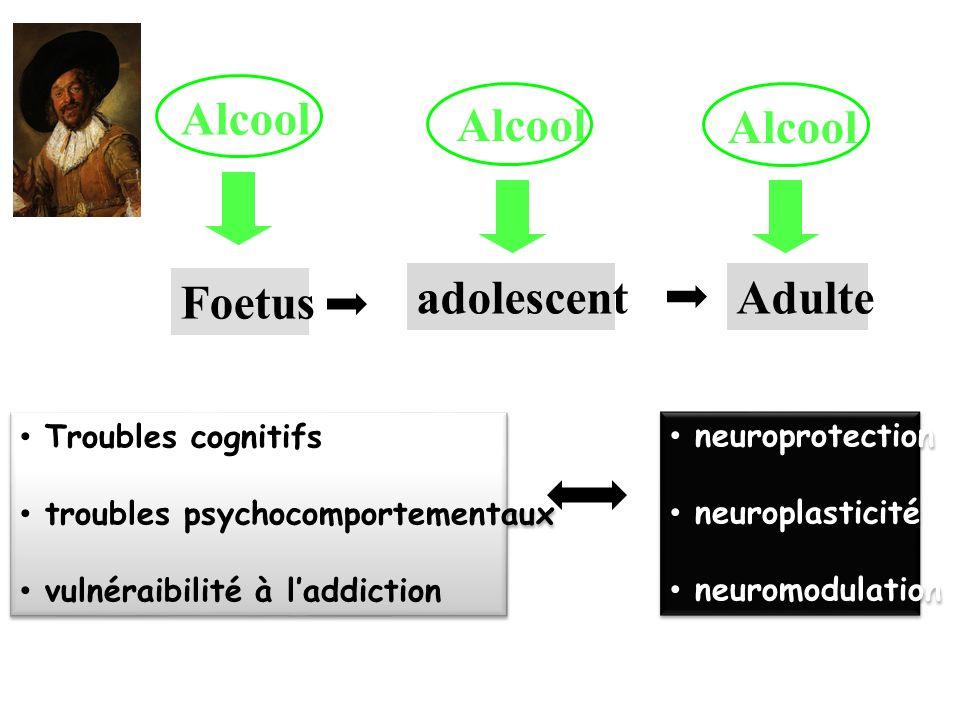 Alcool Foetus Adulteadolescent Alcool Troubles cognitifs troubles psychocomportementaux vulnéraibilité à laddiction Troubles cognitifs troubles psycho